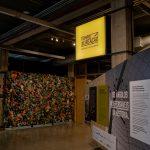 """Exposição """"Tempo de Reação"""" no Museu do Futebol"""